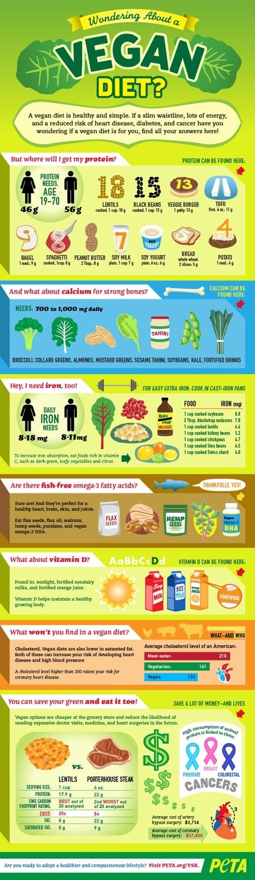 vegan diet infographic